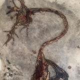 Synapse B