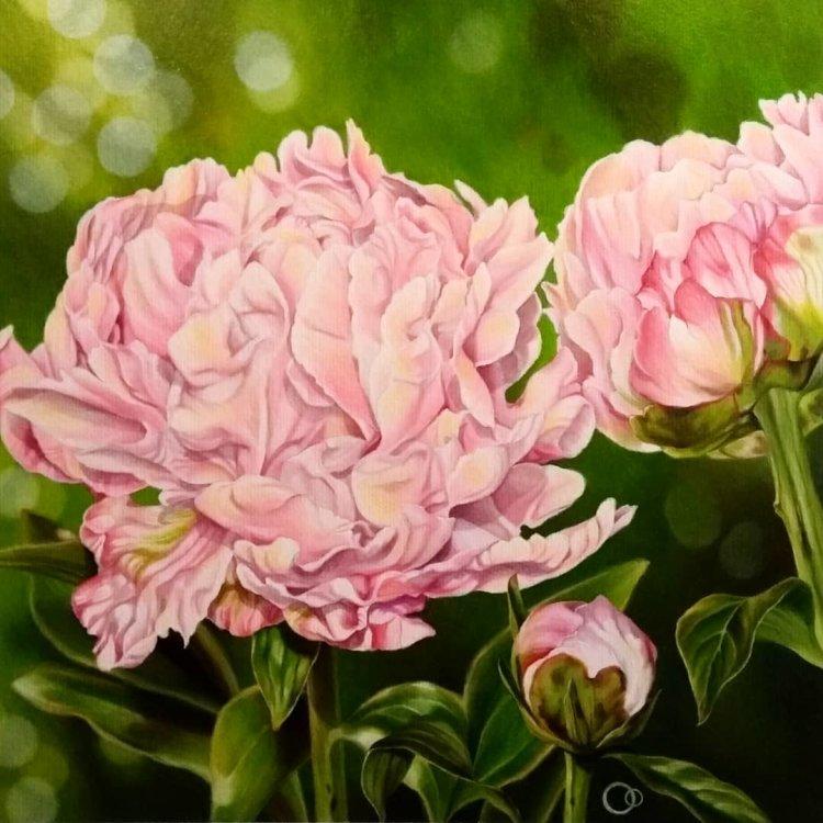 Rhapsody in Pink Peonies Oil Painting
