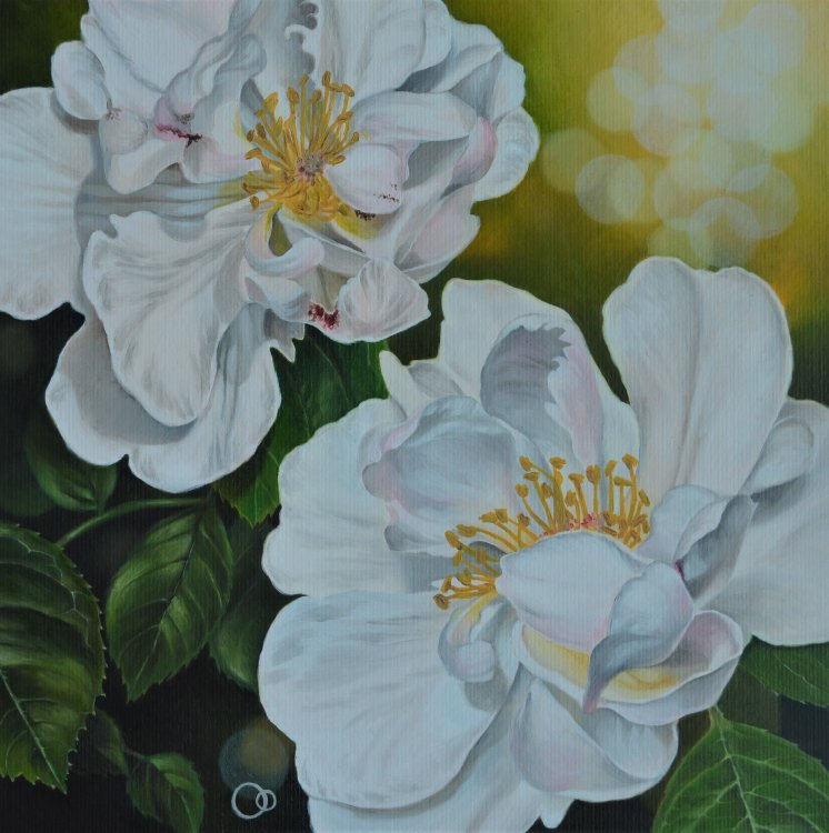 Purity Floral Oil Painting White Roses
