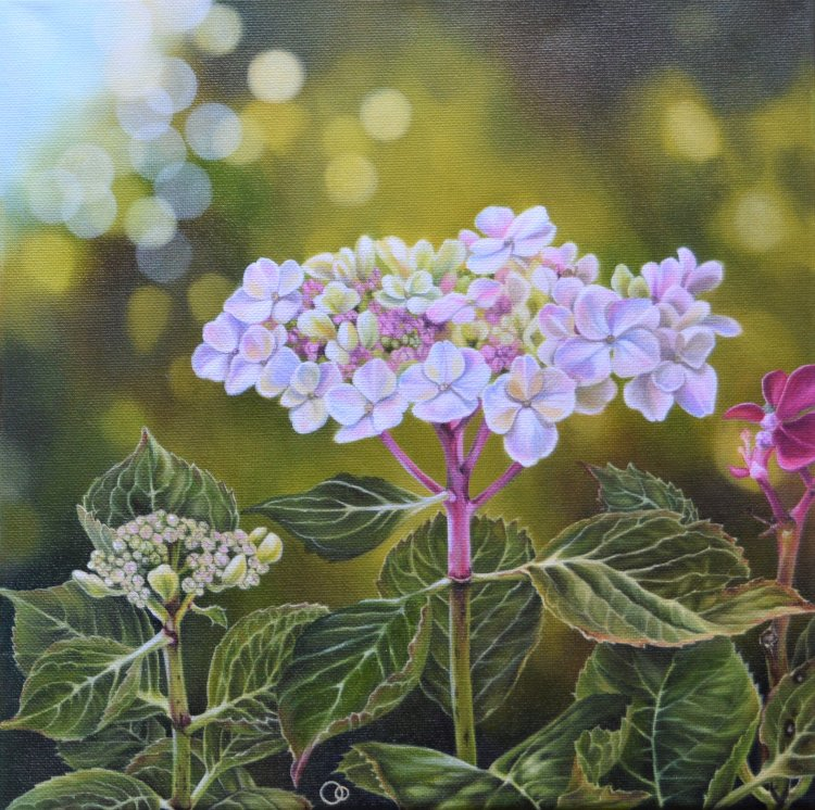 A Prelude to Autumn 2 Floral Oil Painting Hydrangeas