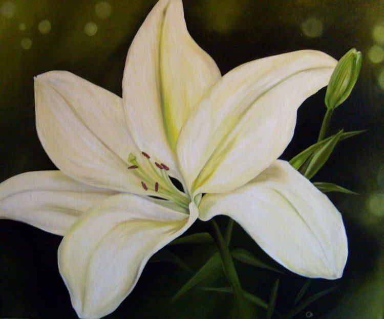 White Lily Flower Oil Painting