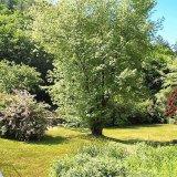 Villafontanella bottom garden