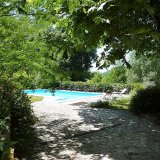 Pool view from the shade of the old plane tree