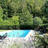 Swimmingpool in June