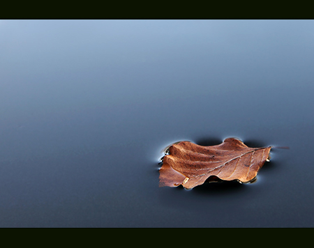 Stillness..... after the wind