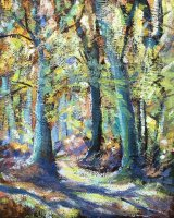 New Forest Beech Trees