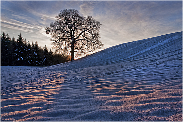 'Bersham Winter Sunrise""