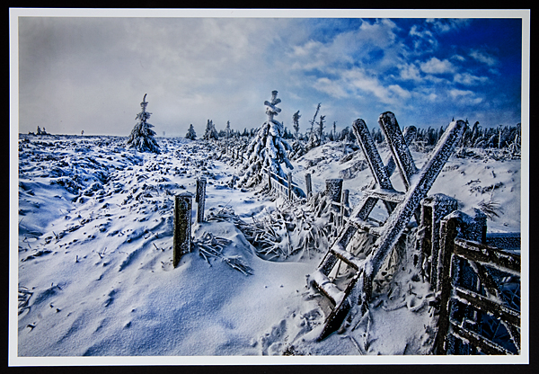 """Deep Winter in Llandegla"""