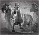"""Horse Power"""