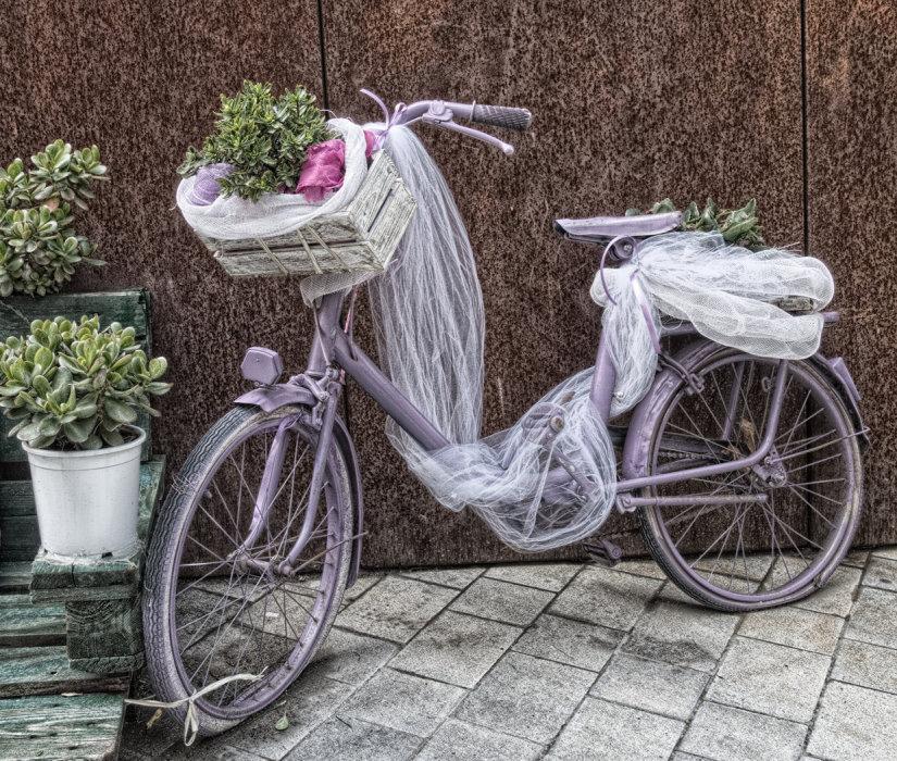 The Lilac Bike