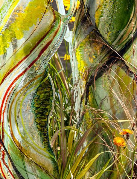 Glass n Grass