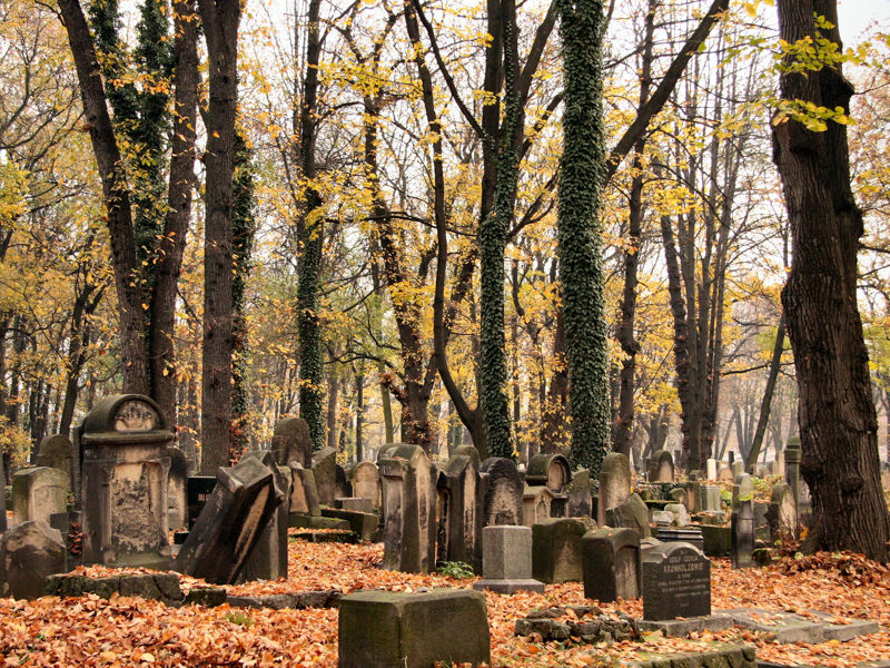 New Jewish Cemetery, Kracow