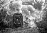 Steam Power - Alan Bevis