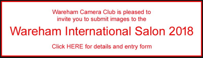 Wareham International Salon Flyer
