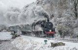 Winter on the Railway - Alan Bevis