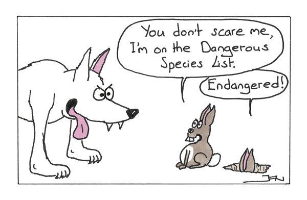 Dangerous bunny