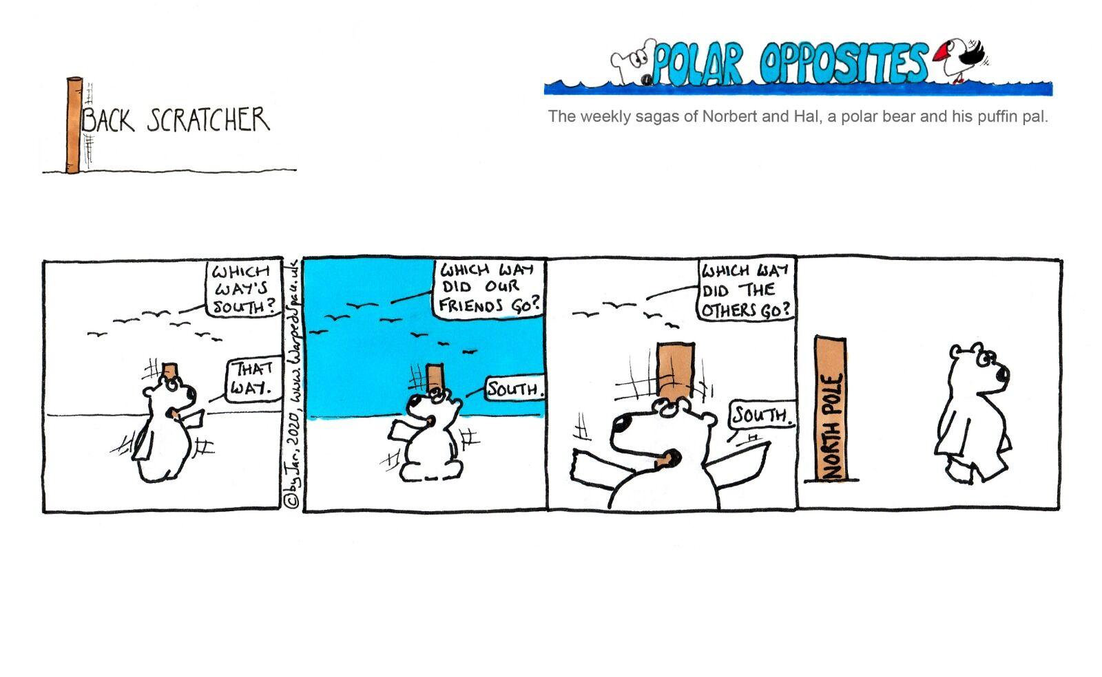 Week 41 - Back Scratcher