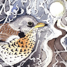 Fieldfare and Thicket