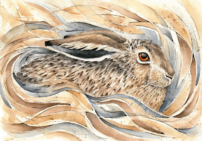 Hare in Form