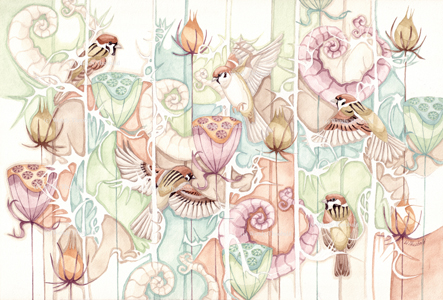 Tree Sparrow sanctuary