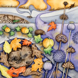 Hedgehog Hideaway