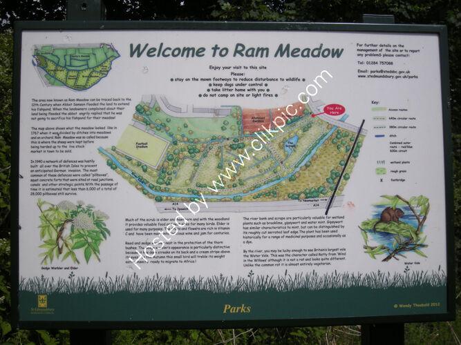 Interpretation panel for Rams Meadow