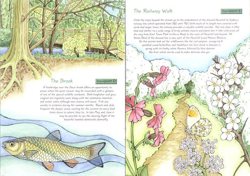 East Town Park Haverhill leaflet illustrations