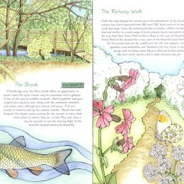 East Town Park Haverhill leaflet illustrations