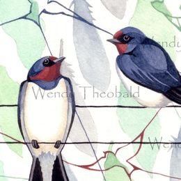 Seasonal Swallows