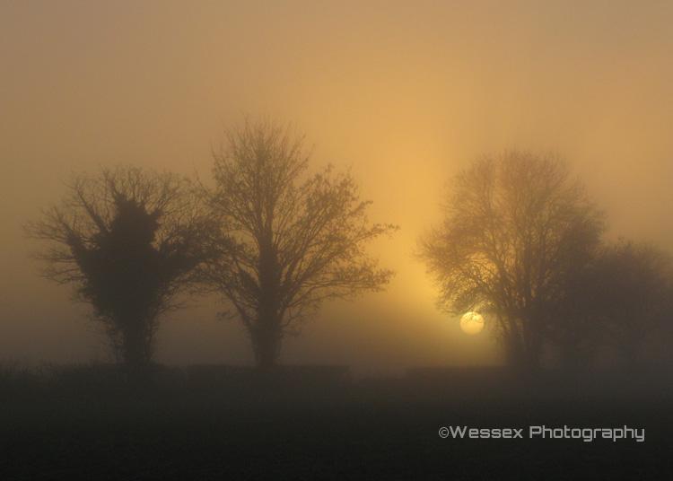 Wolfhall Sunset