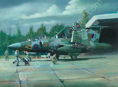 16 Squadron Bucaneer