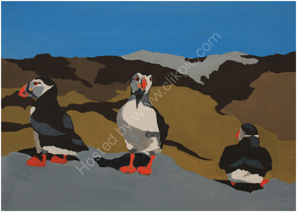 Puffin Collection 1