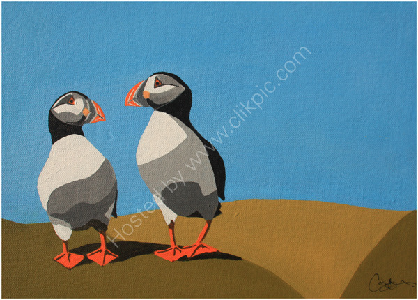 Puffin-Collection-3