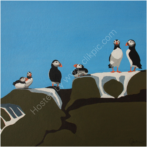 Puffin-Collection-4