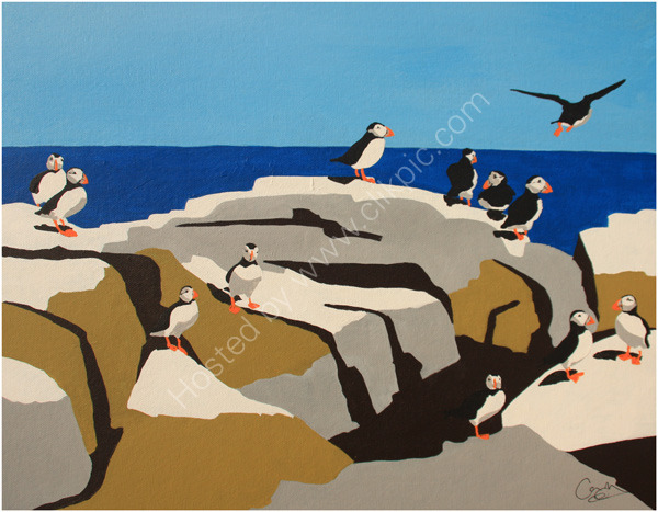 Puffin-Collection-5