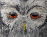 Owl, Talia Alvarez