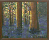 Blubell Wood Impression, Gill Rankine