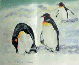 Penguins, Vivienne Lateu