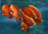 Goldfish, Kowloon, Linda Farrington