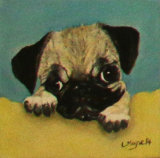 Puppy Pug on Yellow Cushion, Linda Mayne