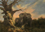 Elephants, Wendy Mills