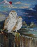 Barn Owls - Jill Akhurst
