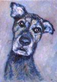 Blue Dog, Linda Farrington