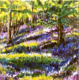 Bluebell Wood, Barbara Drinkwater