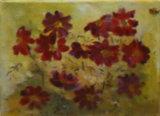 Cosmos, Daphne Ottaway