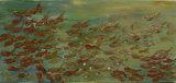 Swimming fish - Barbara Drinkwater