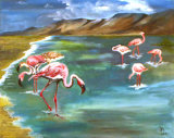 Flamingo, Jill Akhurst
