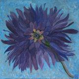 Full Bloom, Margaret Cordes