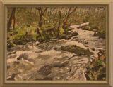 Full Flow in the Lakes, Janet Drewitt