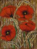 Poppies, Linda Darios